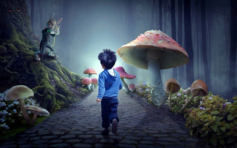fairy-tale-forest-4606645_1920