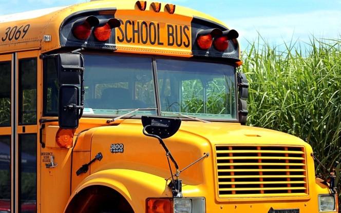 school-bus-4406479_1920